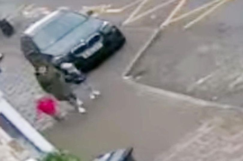 Screams as girls aged 2 and 3 mauled by dog in street attack and rushed to hospital